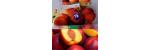 antalya kumluca manav ürünleri satışı Adrasan Ekomini Market