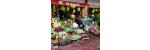 mersin tarsus sebze meyve tedarik firmaları Manav Mahmut
